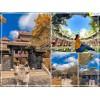 [ƯU ĐÃI HÈ 2021] Combo du lịch Quy Nhơn 4 Ngày  từ Hà Nội 2021: VMB + Sao Biển Hotel