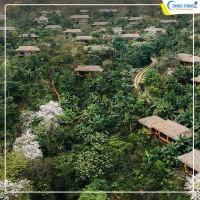Avana Retreat Mai châu