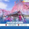 Tour hồi hương Hàn Quốc về Việt Nam