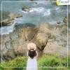 Du lịch Cô Tô 3N2D thiên đường biển đảo từ Hà Nội